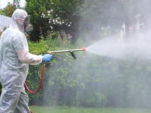 disinfezione-professionale